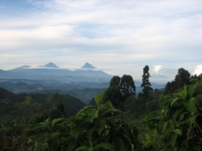 RDC : quand les pétrodollars menacent le parc des Virunga