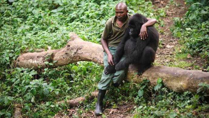 Le groupe pétrolier Soco soupçonné de corruption en RDC