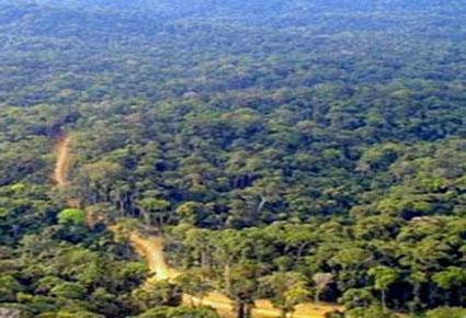 RDC : 21 milliards de dollars pour sauver la planète