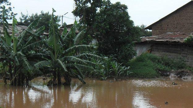 Pluies torrentielles meurtrières au Rwanda