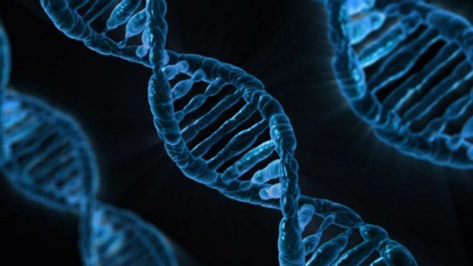 Percée archéologique : des scientifiques de Harvard séquencent l'ADN d'enfants de 8 000 ans