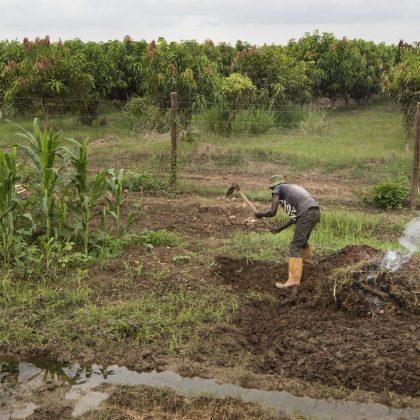Comment l'innovation aide l'économie angolaise à prospérer malgré le Covid-19