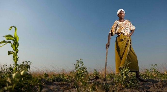 La Turquie et l'équipe du PNUD soutiennent un programme pour l'équilibre entre les sexes au Rwanda
