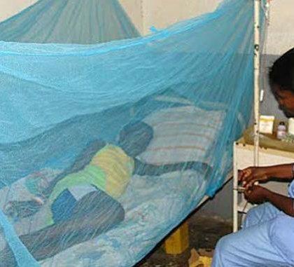Une Camerounaise invente un larvicide atypique pour lutter contre le paludisme