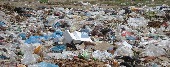 Les impacts positifs de l'élimination des sacs en plastique au Rwanda