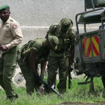 La RDC arrête un trafiquant d'ivoire accusé d'avoir tué des gardes du parc