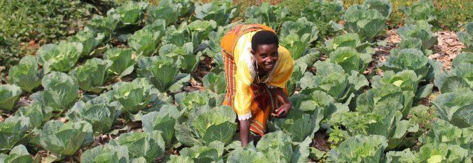 Le Burundi face au changement climatique