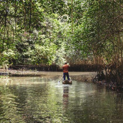 Le Gabon lance l'initiative ForestLAB pour la surveillance de ses forêts