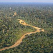 Fonds Bleu pour le Bassin du Congo : une chance pour l'Afrique centrale