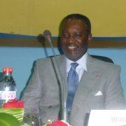 Wilfrid Nguesso mis en examen dans l'affaire des biens mal acquis